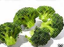 Капуста брокколи нейтрализует вред от курения.