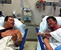 Шварценеггер и Сталлоне попали в одну палату (видео)