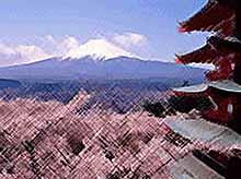 Япония разрешила россиянам получать многократные визы