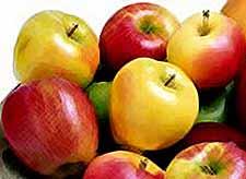 В России может снизиться производство яблок   на 20%