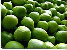 Более 150 млн банок зеленого горошка  произвели на Кубани