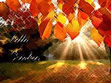 В этом году  наступил уникальный октябрь