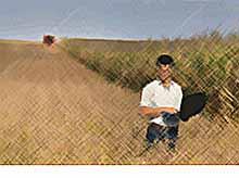 Выпускникам аграрных вузов, направленным на село, назначат единовременную выплату