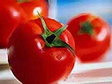 Лучшее средство от инфаркта и остеопороза- помидоры.