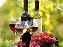 В Берлине презентовали вина Кубани