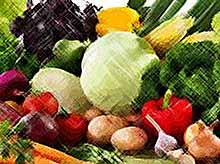 Минсельхоз: дефицита овощей в России из-за плохой погоды не будет