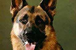 Собака учуяла рак легких