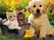 Россияне тратят на домашних животных 1 триллион рублей в год