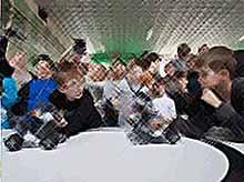 В Краснодаре пройдут соревнования по робототехнике «Робоквант»
