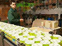 В Краснодарском крае произведут 970 млн банок овощных консервов