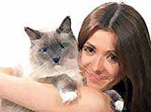 Кошки продлевают людям жизнь