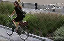 Краснодарцы примут участие в акции «На работу на велосипеде»