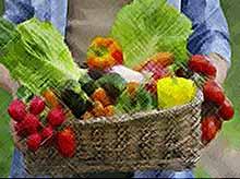 На Кубани открылись первые «фермерские дворики»