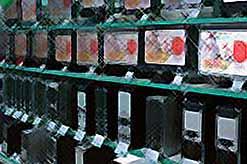 В Краснодарском крае резко подорожали компьютеры