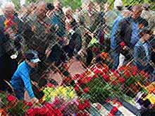 Как в Тимашевске отметили День Победы?