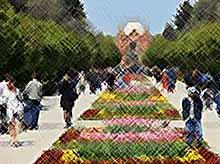 К 2035 году население Кубани превысит 6 млн человек