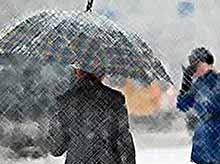 На Кубани прогнозируют снег,ветер и морозы