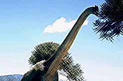Температура гигантского брахиозавра составляла 38,2 градуса Цельсия