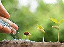 На Кубани построили цех по производству водорастворимых удобрений за 1,3 млрд рублей