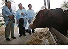 Губернатор Кубани посетил фермерские хозяйства Тимашевского района