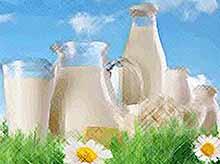 Краснодарский край планирует к 2030 году увеличить производство молока в пять раз