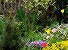 Цветник в саду своими руками