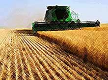 Село обеспечит продовольственную безопасность России