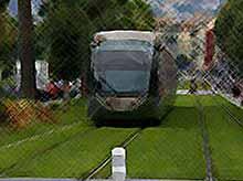 В Европе трамваи ездят по газонам...