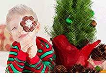 Детям запретили на Новый год дарить ириски