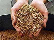 Россия продала на экспорт рекордные 18,5 млн. тонн пшеницы!