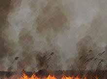 На Кубани объявлено экстренное предупреждение: 7 районам края в ближайшие три дня грозят пожары