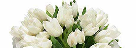 К 8 Марта выбираем цветы.....