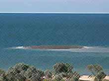 В Азовском море, в Голубицкой, активизировался вулкан (видео)