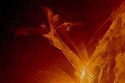 Ученые NASA зафиксировали на солнце ангела. (видео)