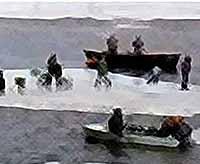 На Кубани  спасли со льдины больше 2-х тысяч человек (видео)