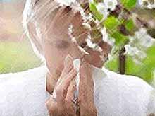 Жители Кубани, страдающие аллергией, смогут следить за концентрацией пыльцы