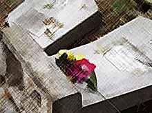 В Тимашевском районе вандалы повредили 29 надгробий на кладбище