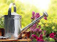 15 необычных советов от садоводов