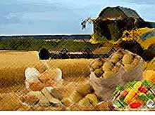 В Крайинвестбанке стартовали новые кредитные программы для аграриев