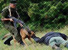 На границе задержали преступника