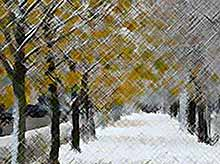 Первый снег выпадет в Тимашевске в начале декабря