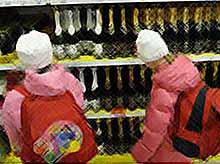 За продажу алкоголя детям  будут штрафовать на 500 тысяч рублей