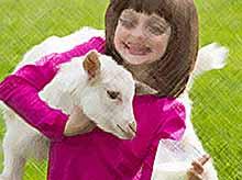 Генетики создали коз, дающих лечебное молоко