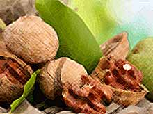 Орехи помогут избежать многих заболеваний