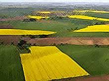 На Кубани появится реестр необоснованных отказов для фермеров