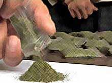 У жителя Тимашевска наркополицейские изъяли семь килограмм марихуаны.