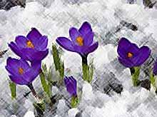 Какая погода ждет нас в марте?
