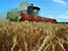 Государство защитит землевладельцев от рейдеров