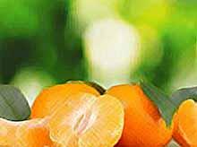 Как выбрать вкусные мандарины