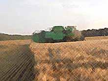 В Тимашевском районе началась битва за урожай.